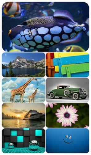 Beautiful Mixed Wallpapers Pack 600