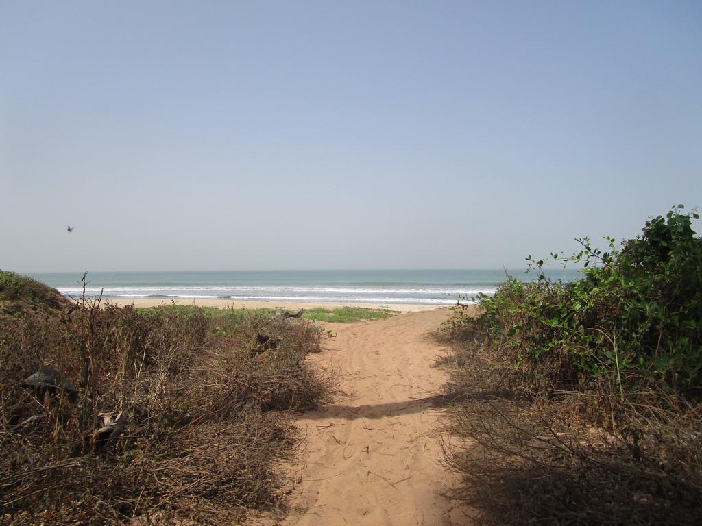 Urlaub Gambia 2017 - Nr. 2 5lnkg4br