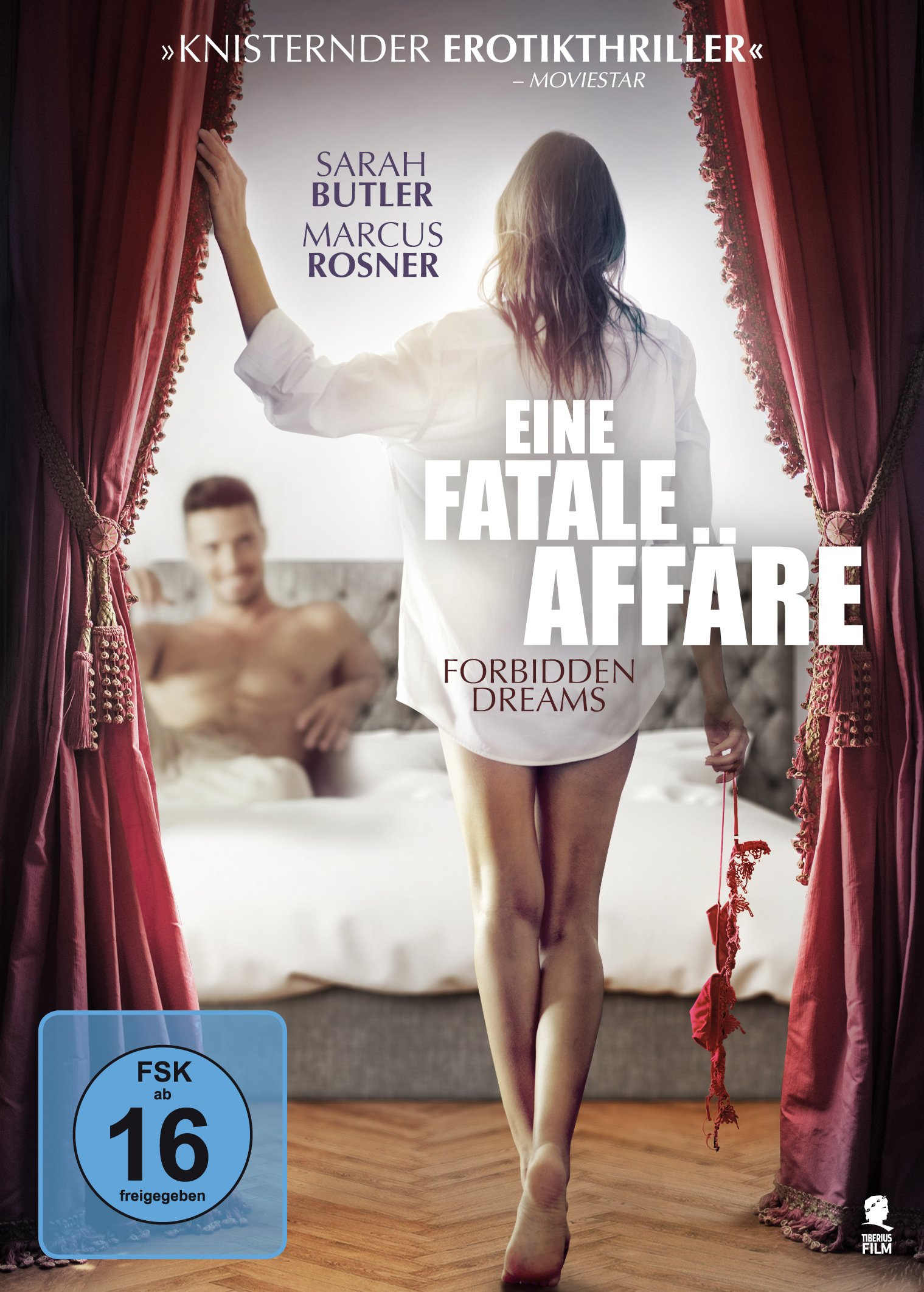 Eine fatale Affaere - Forbidden Dreams 2017 German Ac3 WebHdriP XviD-Ede