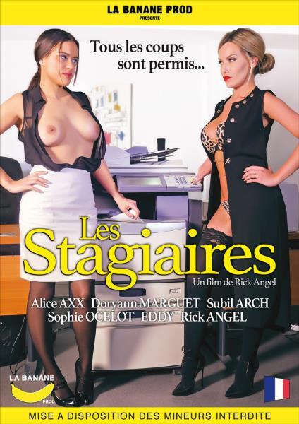 Les Stagiaires (2017/WEBRip/SD)