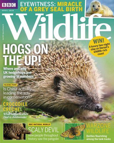 : Bbc Wildlife April 2018