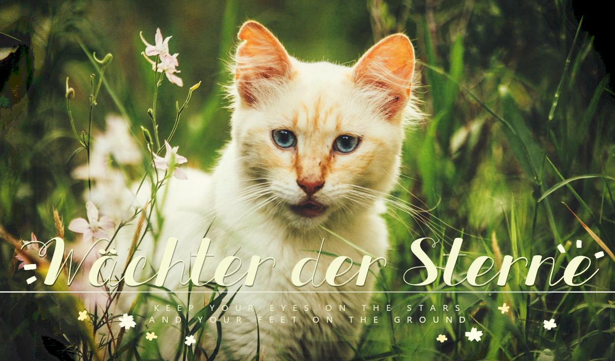 Die Wächter der Sterne