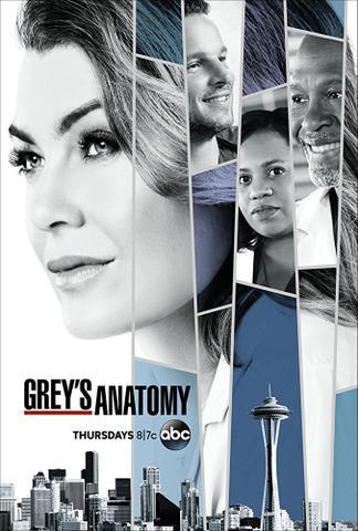 download Greys.Anatomy.S14E09.Ausgeliefert.GERMAN.DUBBED.DL.720p.WebHD.h264-euHD