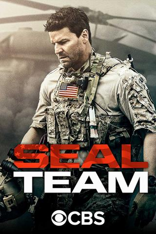 download Seal.Team.S01E20.GERMAN.HDTVRiP.x264-WiSHTV