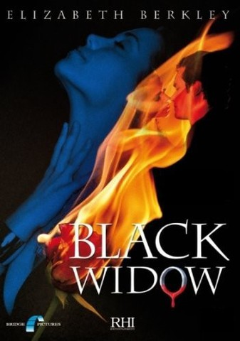 download Black.Widow.Toedliche.Verfuehrung.2008.German.720p.HDTV.x264-NORETAiL