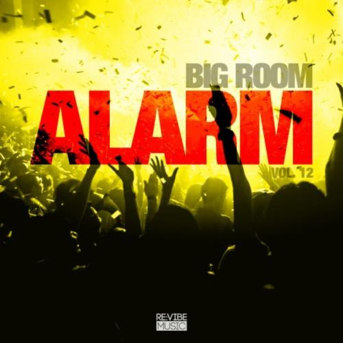 Big Room Alarm, Vol. 12 (2018)