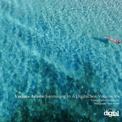 Swimming In A Digital Sea: Volume Six Compiled By Norman H (2018)
