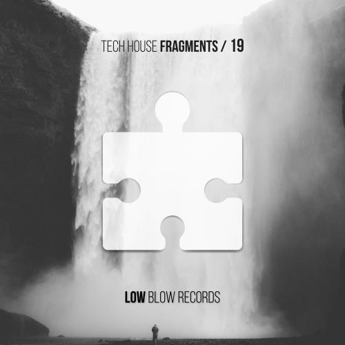 Tech House Fragments 19 (2018)
