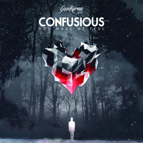 Confusious - You Make Me Feel LP (2018)