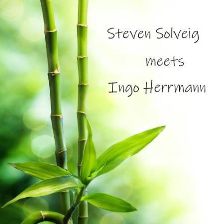Steven Solveig Meets Ingo Herrmann (2018)