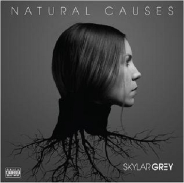 download Skylar.Grey.-.Natural.Causes.(2016)
