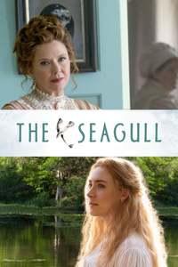 The.Seagull.Eine.unerhoerte.Liebe.2018.German.AC3.DL.1080p.WEB-DL.x265-FuN