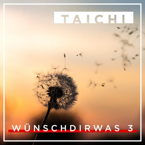 download Taichi - Wünsch Dir Was 3 (2018)