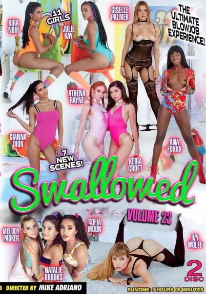 Swallowed 23 Cover