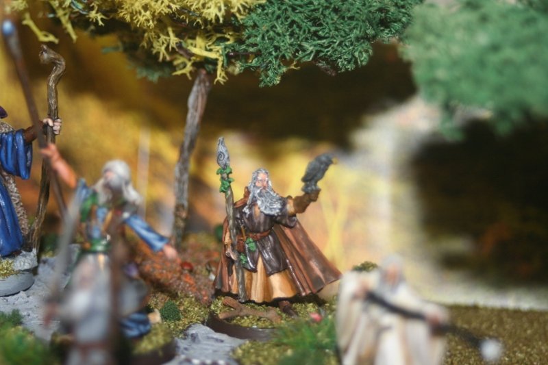 Aragorn et les 5 Armées - Armée de Mirkwood Update Wr7wfsff