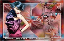 http://espace.tine.free.fr/psp12_lifeisbeautiful/life.html