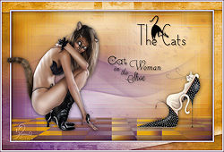http://espace.tine.free.fr/psp12_thecats/cats.html