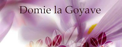 http://domie-la-goyave-tutoriels-psp.eklablog.com/