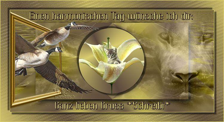 An den Beitrag angehängtes Bild: http://fs5.directupload.net/images/user/161110/7tzvxqfs.jpg