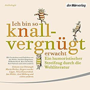Hörbuch Cover für Ich bin so knallvergnügt erwacht: Ein humoristischer Streifzug durch die Weltliteratur