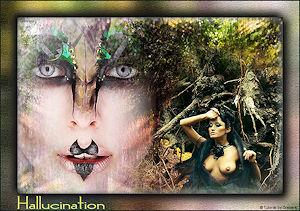 http://www.erotische-pspcreaties.nl/eigen_lessen/hallucination/hallucination.htm