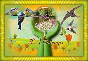 http://tutosdebijounet.eklablog.com/le-printemps-arrive-c29138884