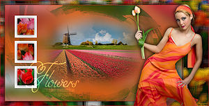 http://www.psp-mee-met-catrien.nl/flowers_are_like_sunshine/flowers_are_like_sunshine.htm