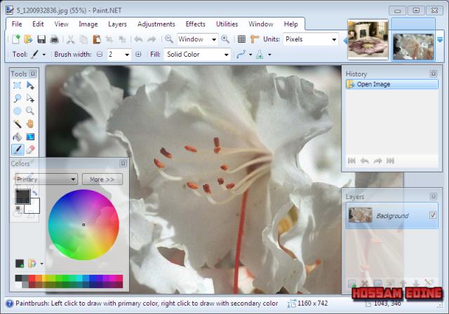 وأستعراض إصدراته paint.NET 4.0.18 Final 9p8cbreq.png