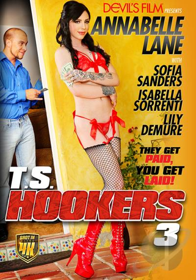 T S Hookers 3 Cover