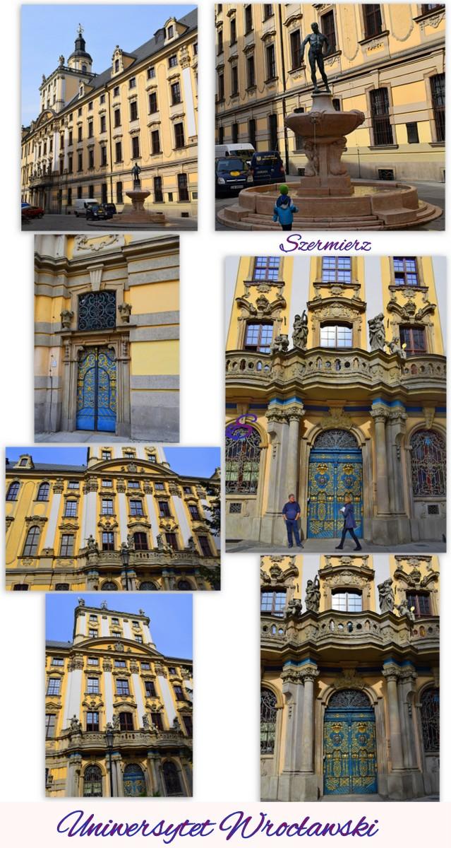 http://fs5.directupload.net/images/user/171003/72kabnya.jpg