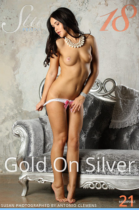 Stunning18 Susan - Gold on Silver Cover