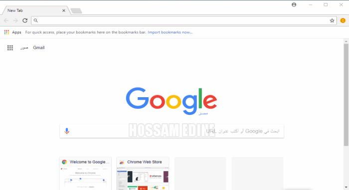 Google Chrome 65.0.3325.162 Final zasgd48e.png
