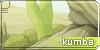Kumba Banner