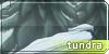 Tundra Banner